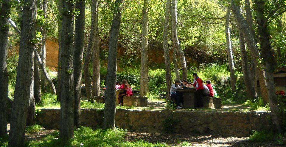 Excursiones en la naturaleza y actividades escolares en Aragón